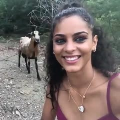 Goat Headbutts Girl Trying to Take Selfie With It